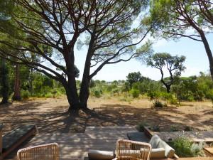 Calitu : vue d'ensemble sur le jardin